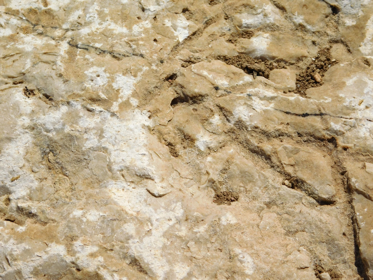 Stone texture Backgrounds Close-up Day Marble Nature No People Rock - Object