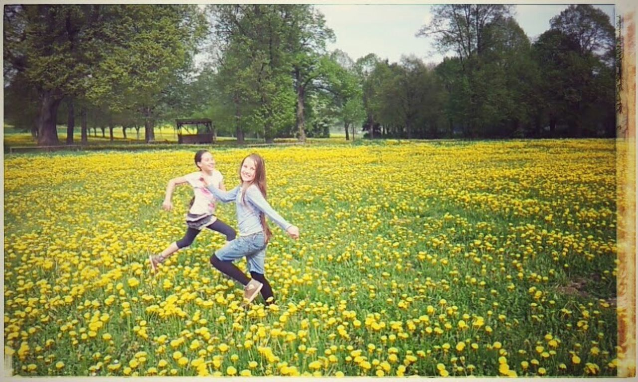 two people, flower, happiness, full length, yellow, tree, togetherness, outdoors, fun, casual clothing, nature, growth, young women, adult, enjoyment, day, carefree, field, vitality, smiling, young adult, motion, plant, leisure activity, adults only, people, cheerful, springtime, rural scene, only women, women, beauty in nature, sky