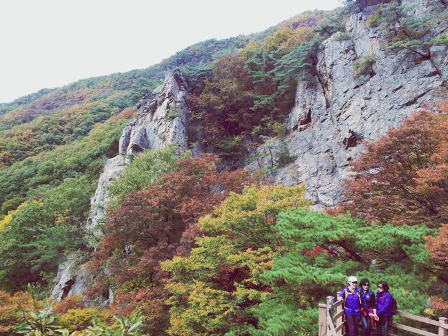What Does Freedom Mean To You? Mountains Freedom Autumn 소요산 가을단풍