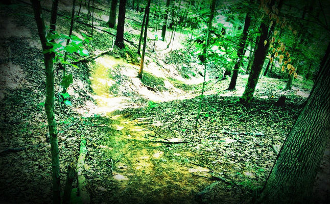 rollers at crabtree | mountain biking at Lake Crabtree County Park by Johnny Biltmore