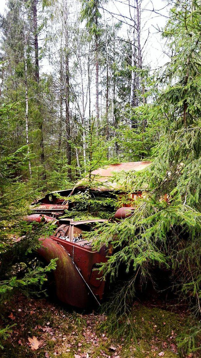 Rusty Autos