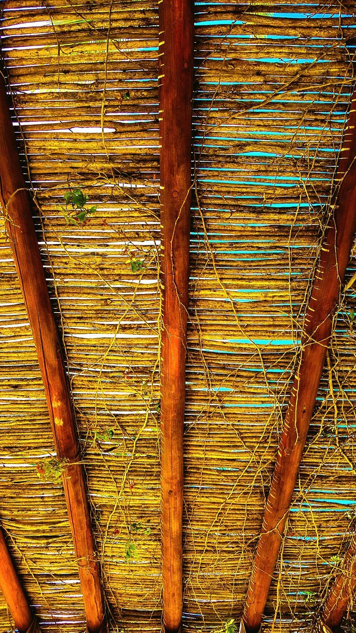 wood - material, no people, day, outdoors, textured, full frame, close-up, nature