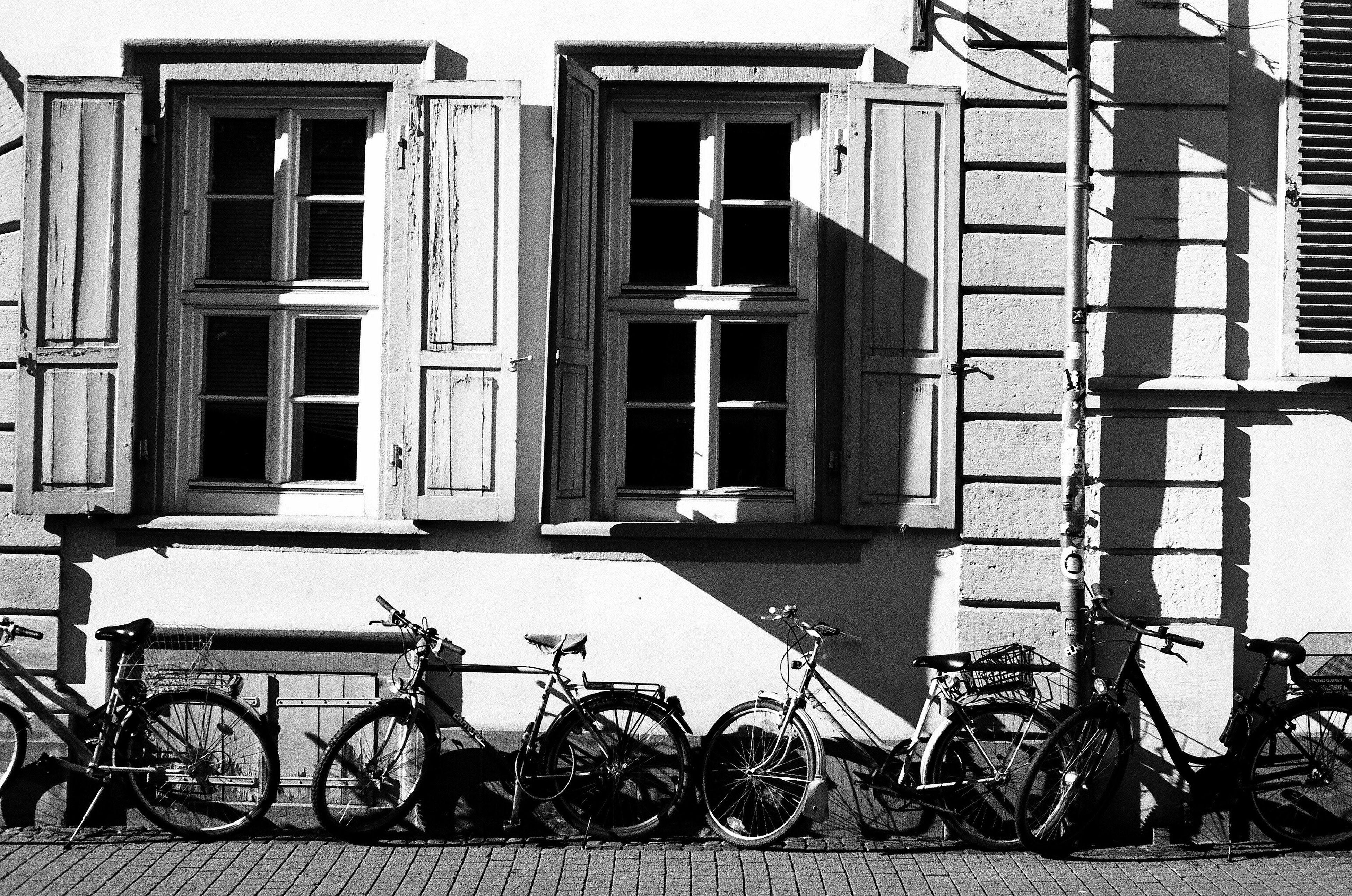 Germany Snapshots Of Life