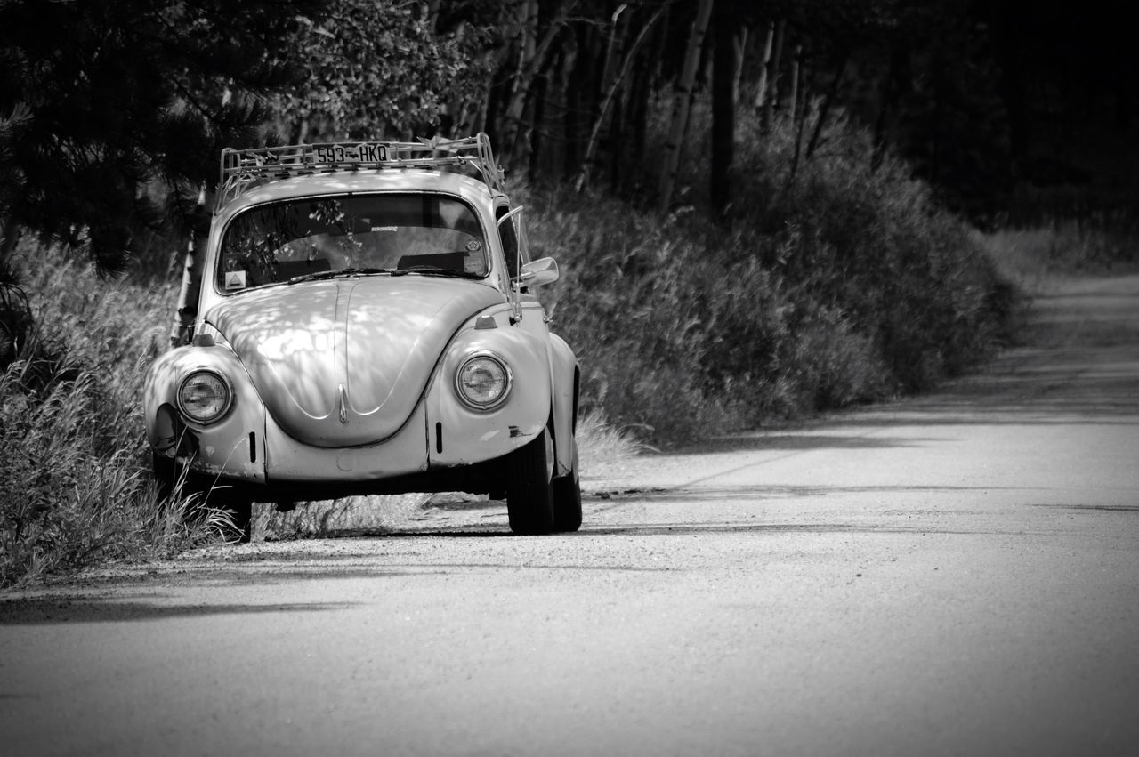 I'll Wait Here... Mountain Road Picture Opportunity 1969 VW Beetle Slug Bug Slug Bug Silver High Country Adventure Dependable