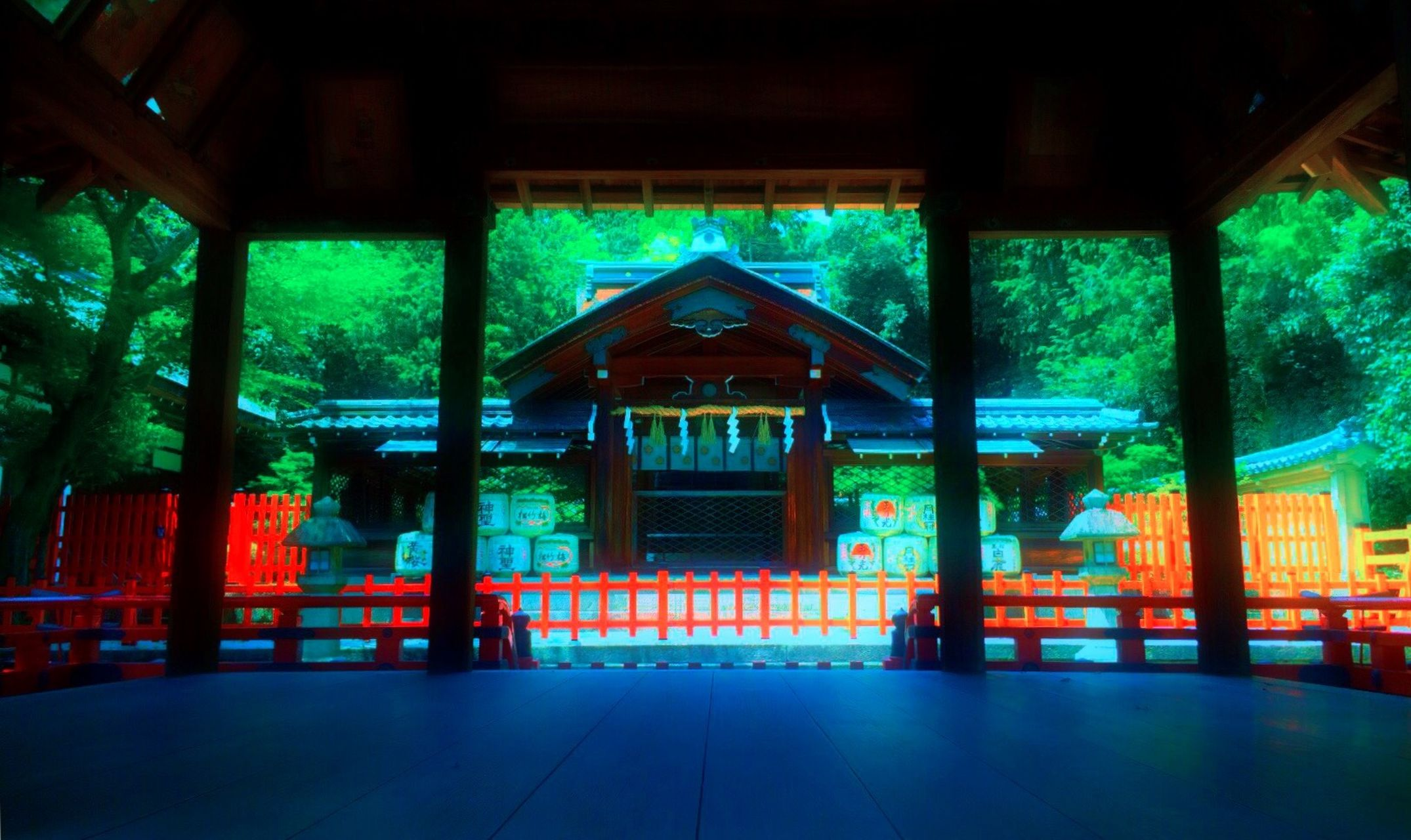 Japan Red Trees Hugging A Tree Japanese Temple Landscape Japanese  織田信長 IPhoneography 建勲神社