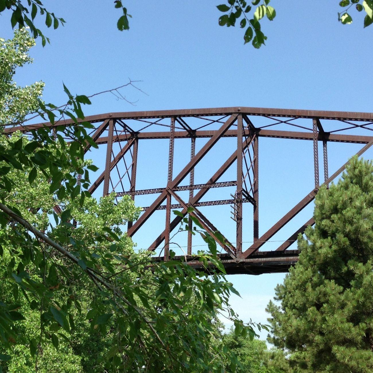 Bridge peeking through the trees along the Missouri River. Architecture Bridges North Dakota Railroad
