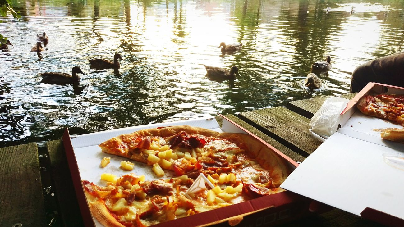 They sure like pineapple pizza Food And Drink Ready-to-eat Temptation Nature Relaxation Good Day Ducks At The Lake Pizza <3 Friends Down By The Creek