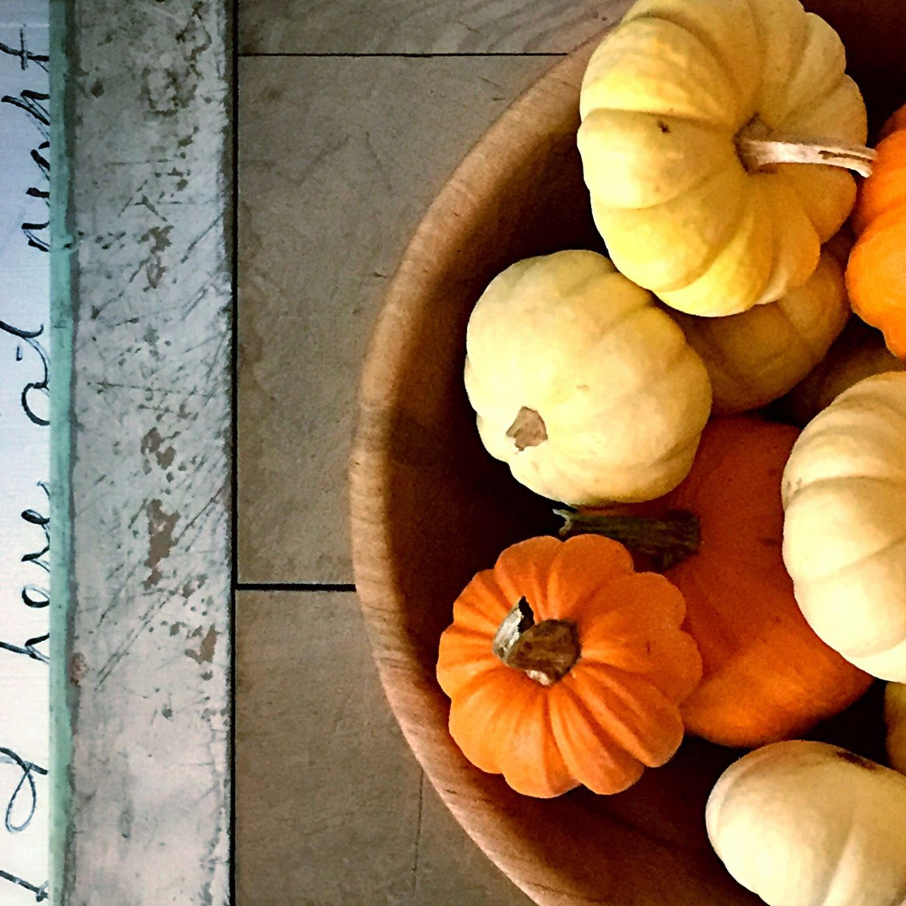 Still Life with Pumpkins and Gourds Fall Tableau
