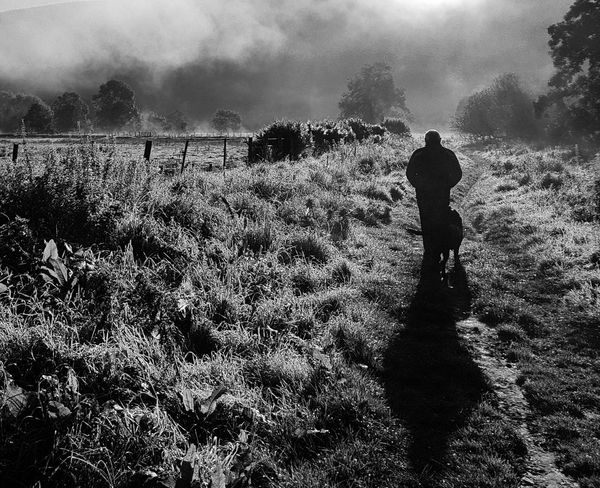 One man and his dog. One Person People Outdoors Nature Men Real People Adult Silhouette One Man Only Landscape Standing Innerleithen Morning Misty Morning Scottish Borders Scotland Monochrome Photography Black And White The Week On EyeEm