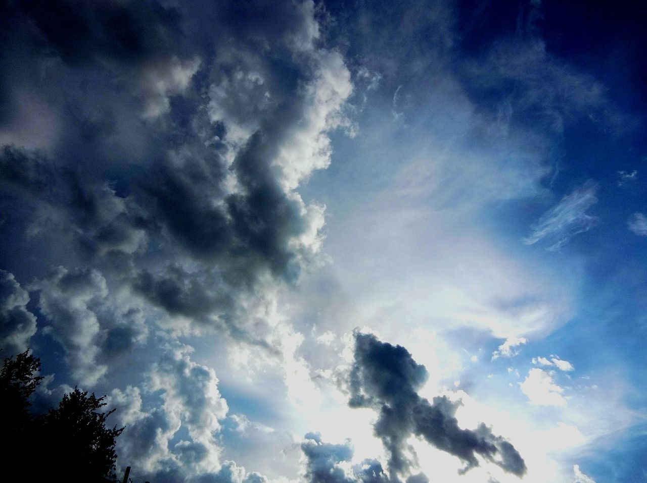 sky, cloud - sky, low angle view, nature, beauty in nature, no people, scenics, day, outdoors, tranquility, blue, tree