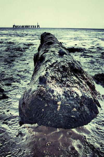 Stannes Lythamstannes Beach Photography