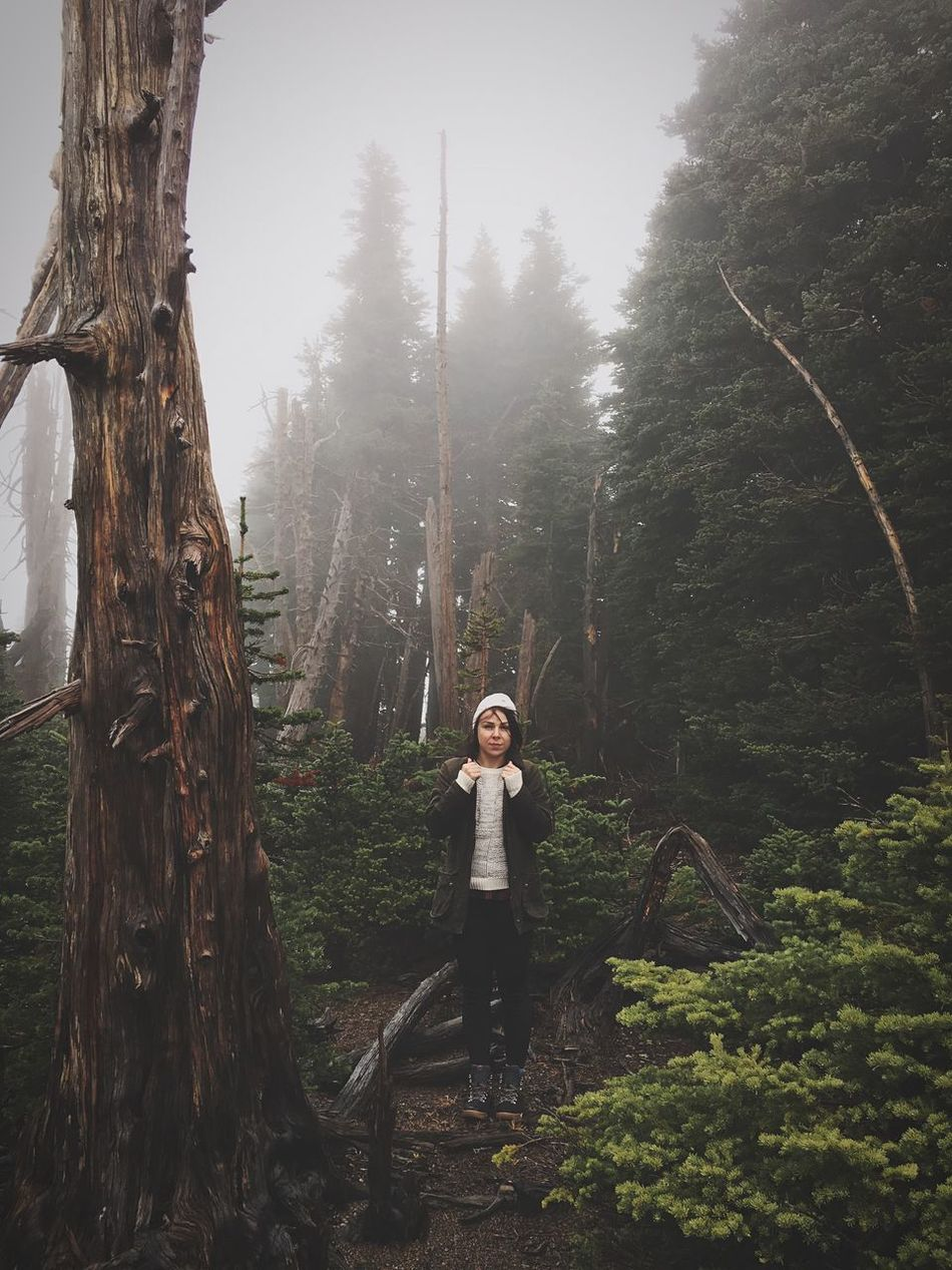 PNW PNWonderland One Person Forest Foggy Day Fog Beauty In Nature Old Tree