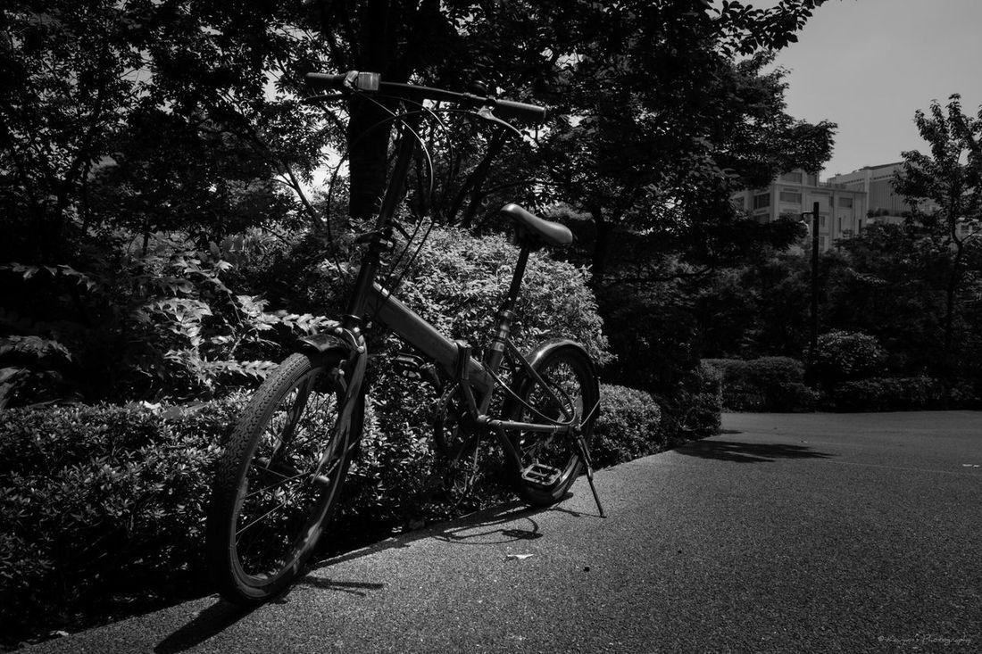 Tokyo Midtown Tokyo Midtown Park Bycicle Blackandwhite Black & White Black And White Fujifilm_xseries FUJIFILM X-T1 XF 16mm F1.4 R WR TOWNSCAPE Pmg_tok