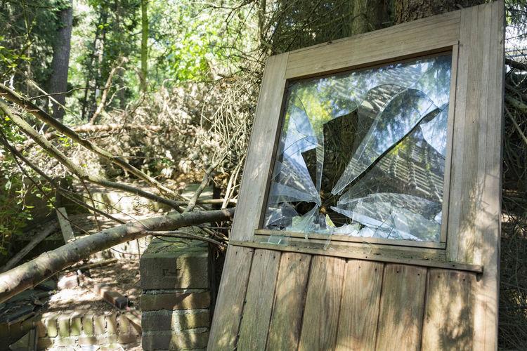 Broken Broken Window Door Shards Shatterd Dreams