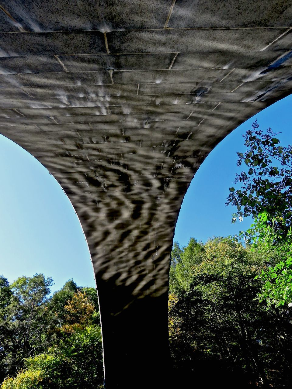 connection, bridge - man made structure, tree, low angle view, day, architecture, arch, below, no people, built structure, nature, sunlight, transportation, under, outdoors, bridge, underneath, sky