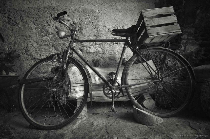 Franciscojpg Blancoynegro Black & White Bicicleta Bicycle Detalle Urbano