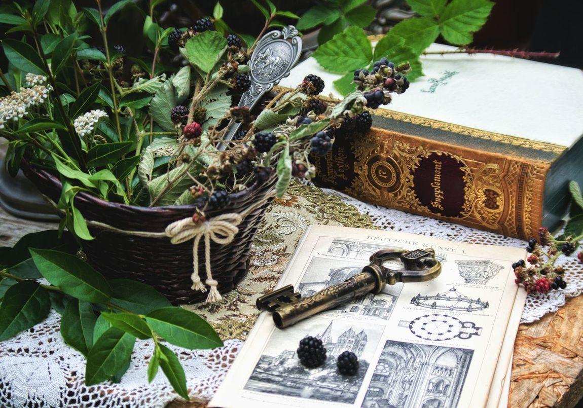 винтаж книга ягоды ежевика зелень  ключик кружево салфетки предметнаясъемка Brockhaus Bücher  Vintage Berrys