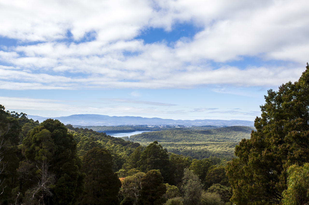 Taken at Kalorama lookout in Australia. Australia Australian Beauty In Nature Blue Sky Cloudy Dam Dandenong Ranges Forest Green Color High Angle View Idyllic Kalorama Landscape Lookout Nature Scenics Sky Tranquil Scene Tranquility Tree Trees View Water