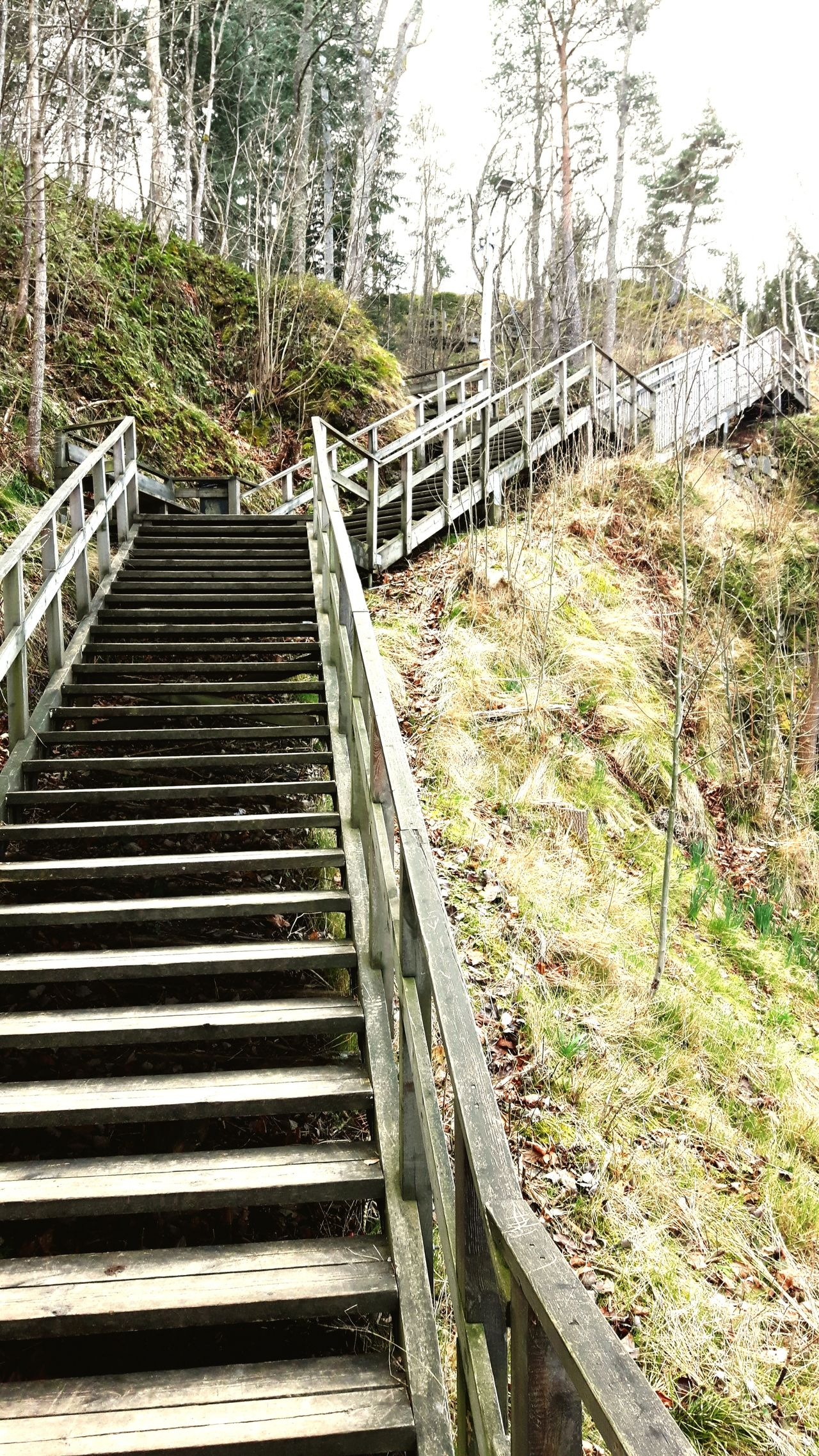 The Way Forward No People Outdoors Footbridge Gränna Gränna, Sweden Grännaberget Travel Destinations Nature Treppen Stairs Escaleras Treppen Stairway Stairway To Heaven