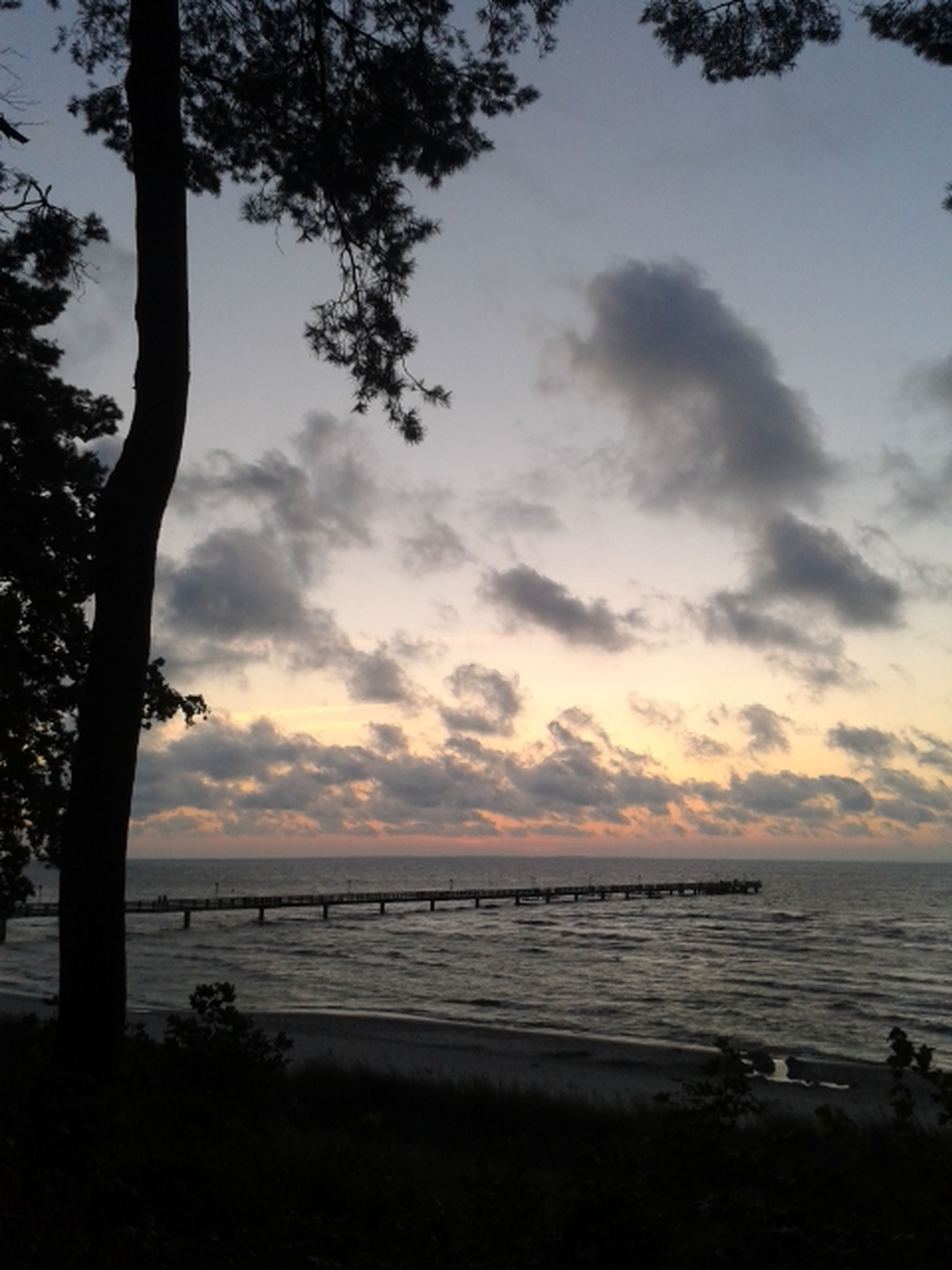 sky, sea, cloud - sky, water, tree, scenics, tranquil scene, horizon over water, beach, beauty in nature, tranquility, nature, cloudy, sunset, cloud, silhouette, shore, idyllic, outdoors, incidental people