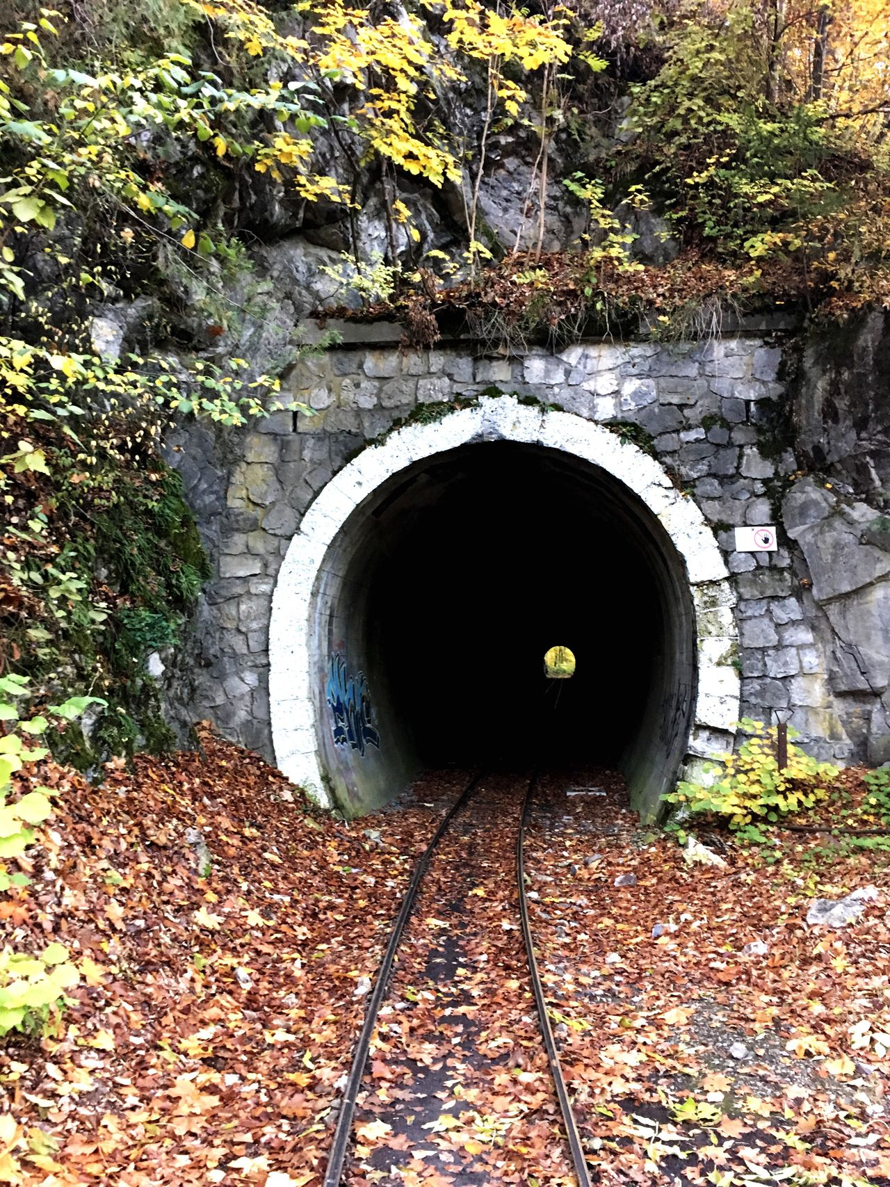 Pipe - Tube Autumn Outdoors No People Tunnel Nature Day Bükk Light At The End Of The Tunnel End Mistery Darkness And Light Fall Autumn Collection Adapted To The City The Secret Spaces