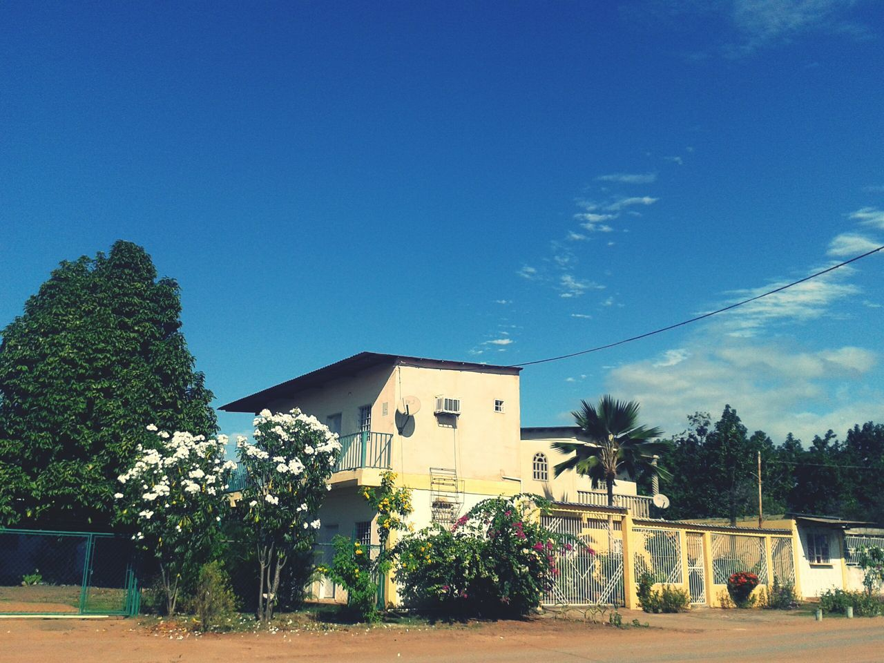 built structure, architecture, tree, house, building exterior, day, sky, blue, no people, outdoors, plant, clear sky