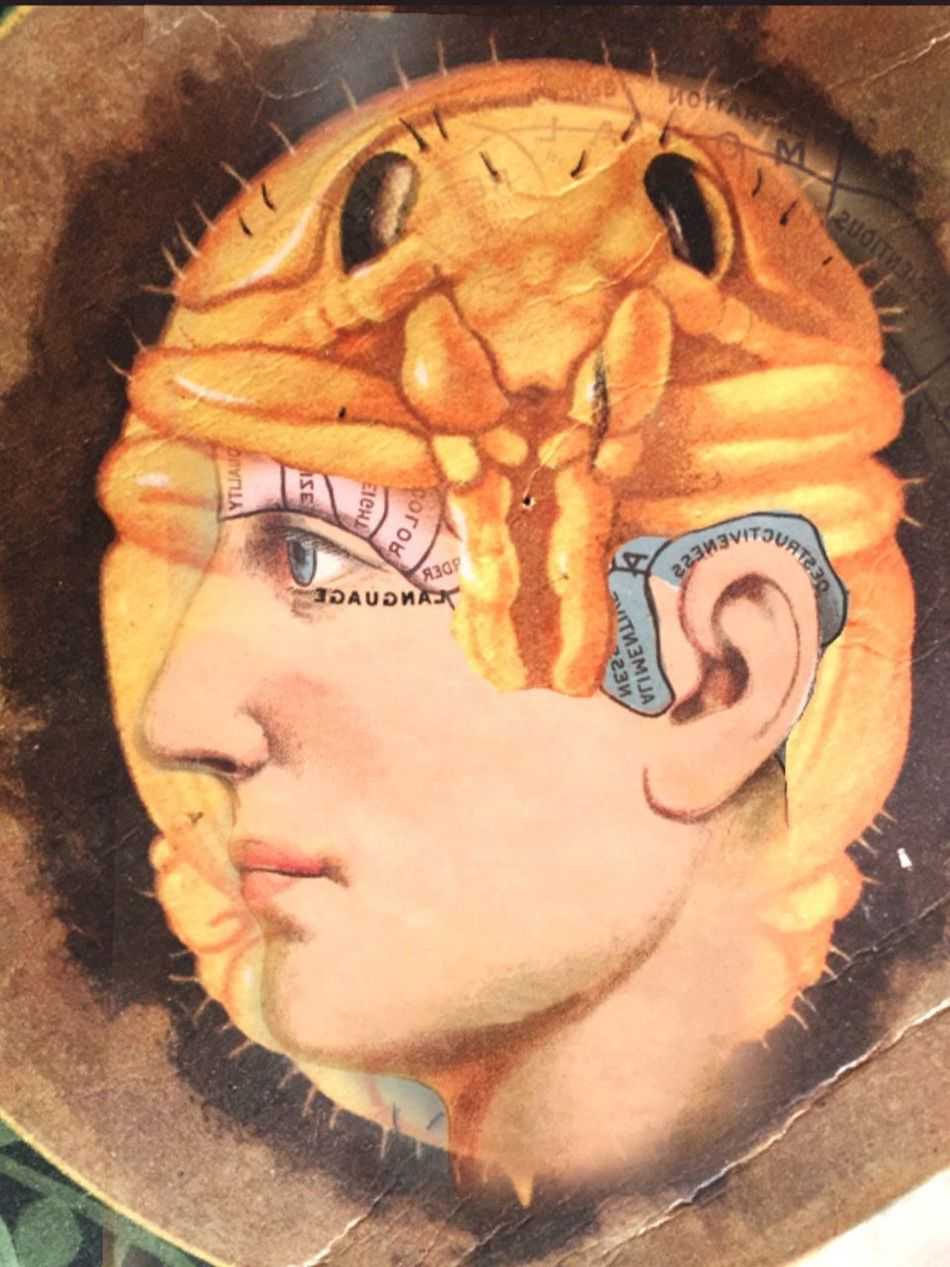 Symbiotic Relationship The Truth Of The Matter Is... Surrealism Facial Experiments Photographic Approximation Forgotten Dreams New Nightmares A Population Suffering Of Amnesia Find Out For Yourself Try To Remember