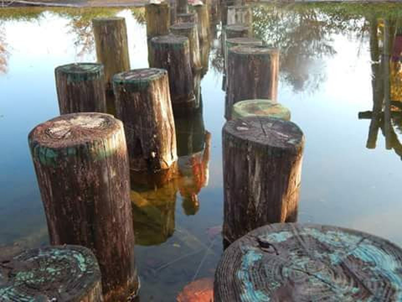 reflection, wood - material, day, no people, ancient, water, outdoors, close-up, sea, nature, ancient civilization