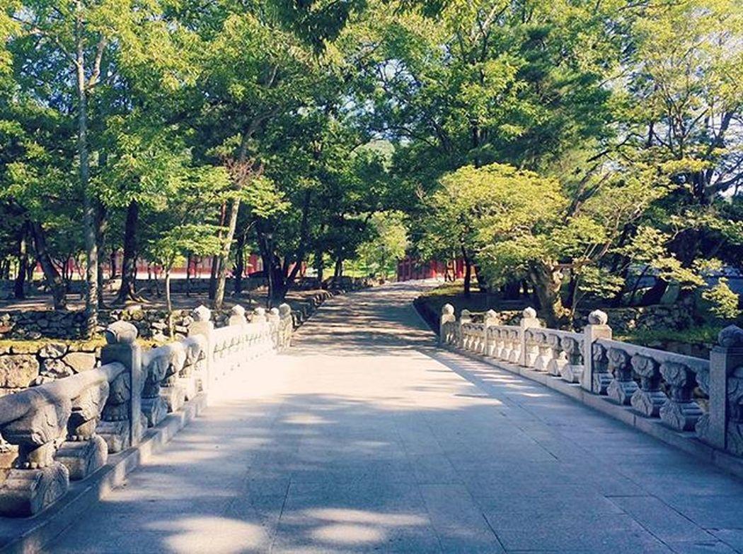 범어사 부산 Temple Nature Busan KoreaTour Korea