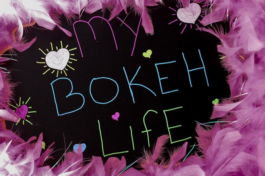 My Bokeh Life Pastels Writing On The Wall Bokeh Pink Feathers Chalk Board Sign Flower Pink Color Text Petal Indoors  No People Close-up Flower Head