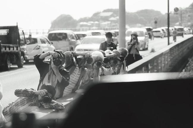 撮り鉄? CameraMan Scene Moment Hunter 江ノ電