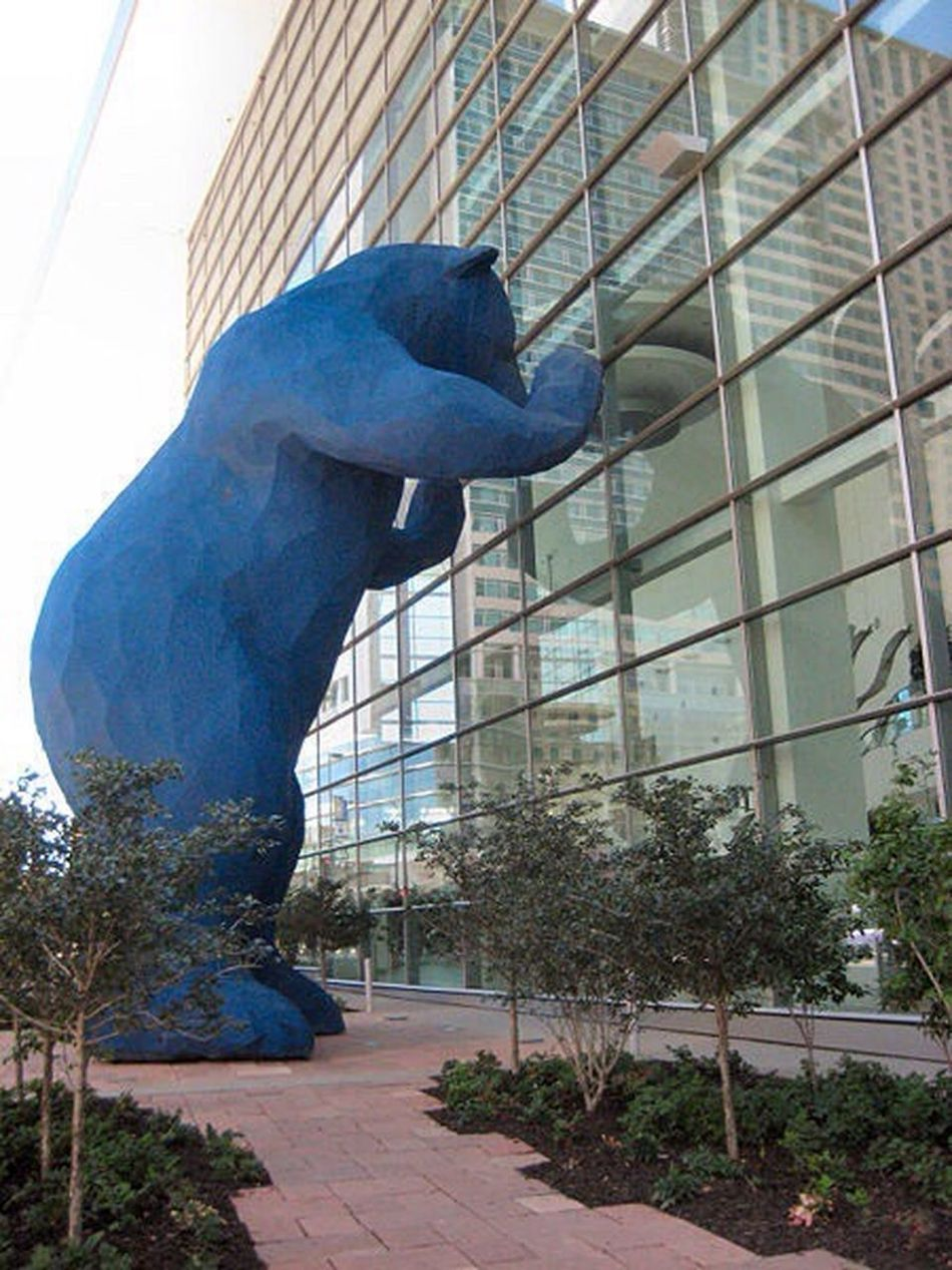 Alpha bear Built Structure City Architecture Modern One Person Day People Skyscraper Outdoors Streetart Lovebears Blu Whereareyou JustMe