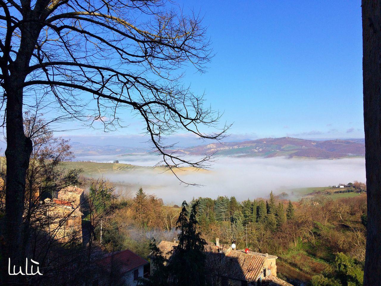 New Year Around The World Light And Shadow Light Paesaggio Toscana Showcase: January