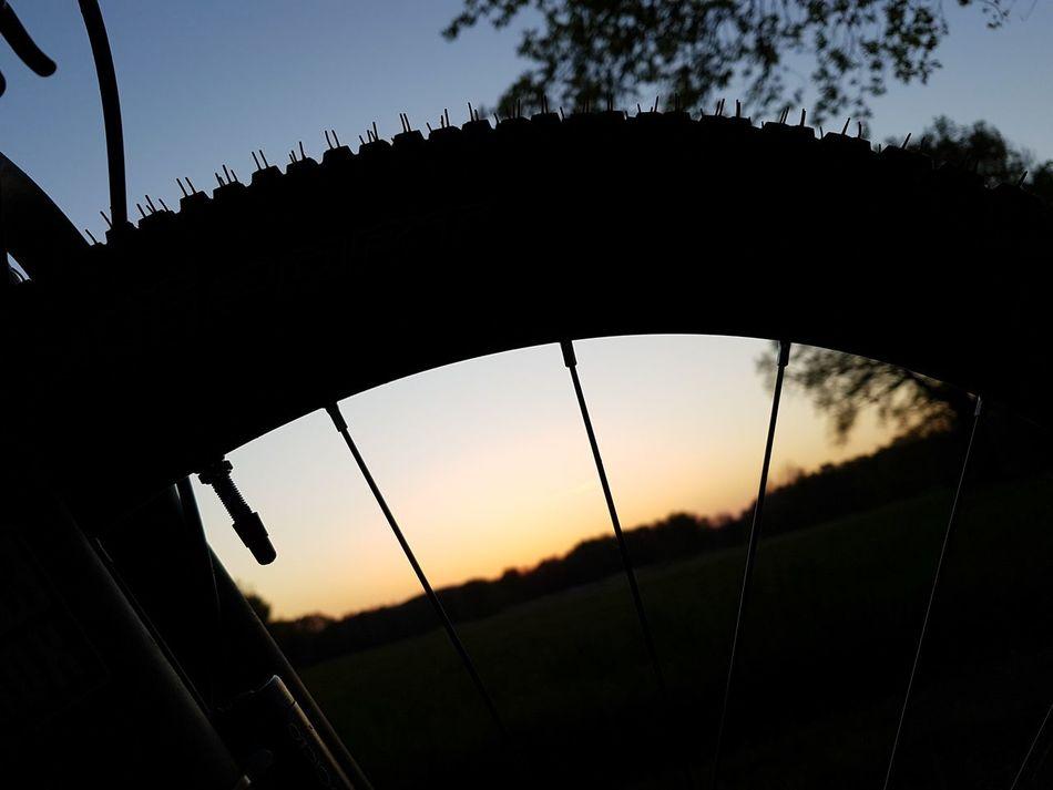 Silhouette Sky No People Outdoors Tree Sunset Bike Bike Tour Day Black