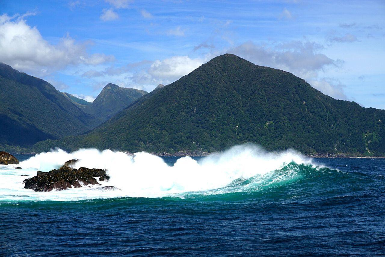 On enroute from the Tasman Sea Mountain Landscape Sea Scenics Water Summer New Zealand Scenery Doubtful Sound Fiordland National Park Fiords Animal Wildlife