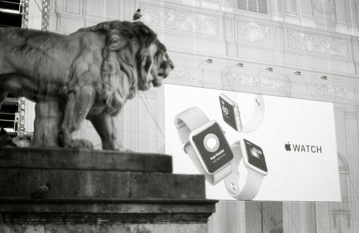 Ingo Kessler Advertising Analogue Photography Apple Blackandwhite City Close-up Day Domestic Animals Film IWatch Lion Mammal No People Pets Poster Statue