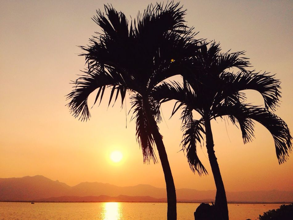 Traveling Thailand Sunset Beauty In Nature Silhouette Tadaa Community Phayao