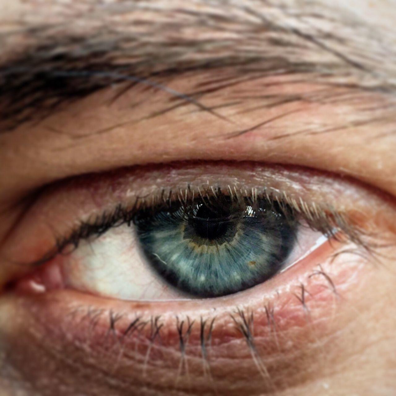 Soul ... Human Eye Eyesight Human Body Part One Person Eyelash Real People Looking At Camera One Man Only Iris - Eye Men Photo Soul Blue Occhi