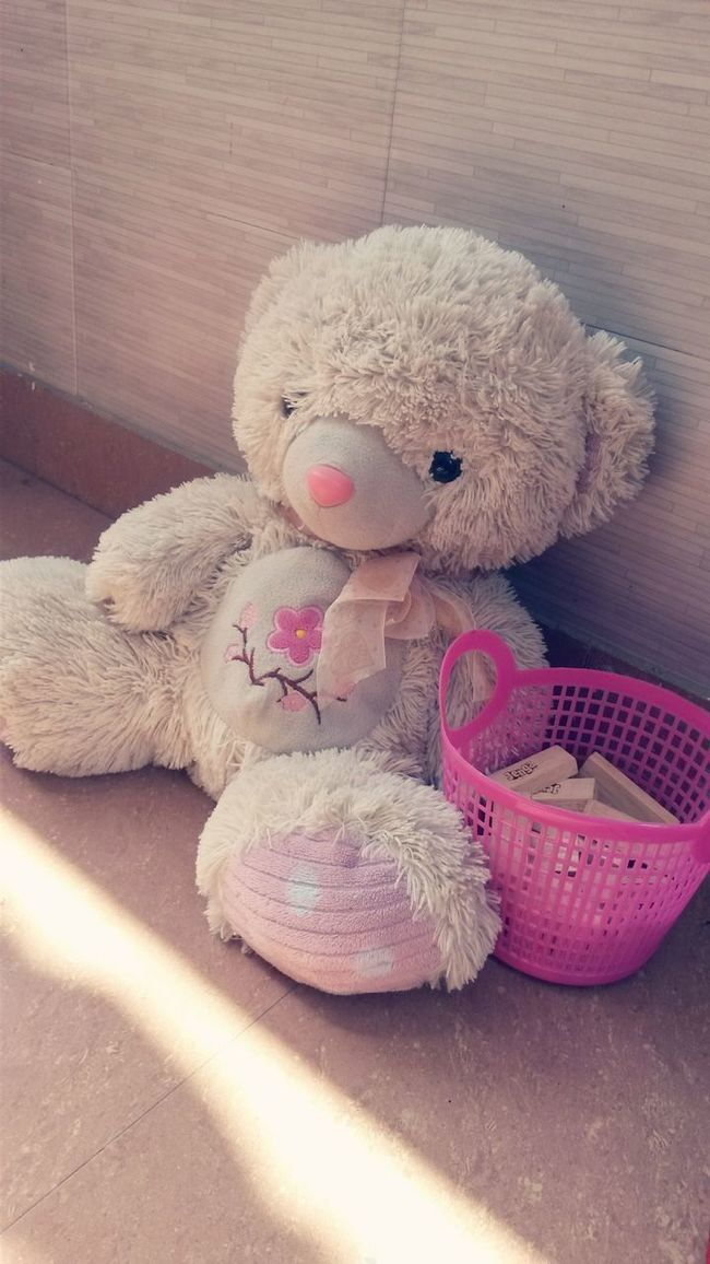 Stuffed Toy Teddy Bear Toy Softness Arrangement Indoors  Shelf Order Brijesh Photography Morning Light Morning Rosé Love Heart Pink Pinkish Bars Teddie Cute Cute♡ Cuteness Top picoftheday #photooftheday #photography #iphonesia #pikturdis #WeAreTheCulture #jj_forum #webstagram #world #streetstyle #shootinupny #statigram #randomfreshness #tbt #twitter #nycphotography #nyc #les #igdaily #everybodystreet #vsco streetphotography s Picofthemonth