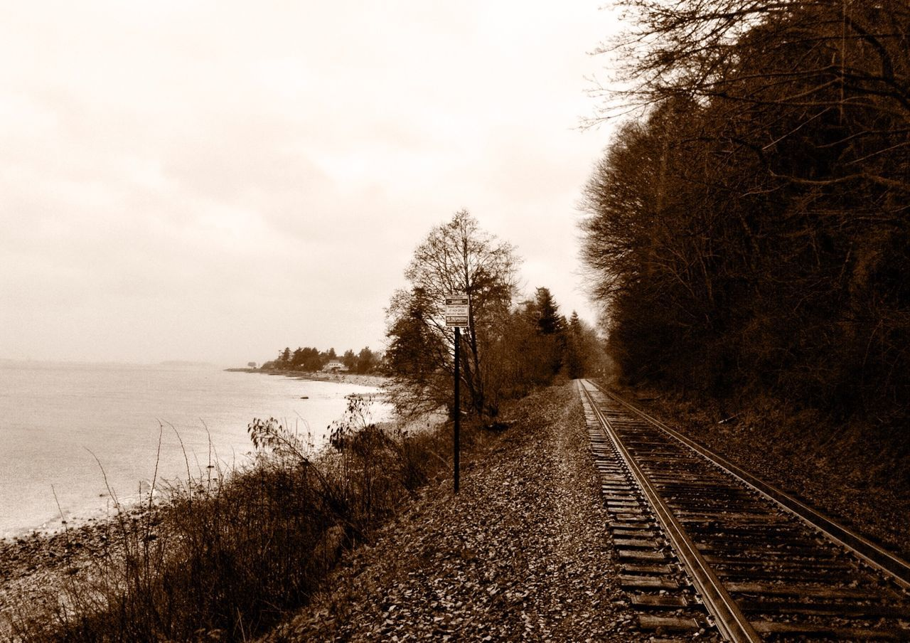 railroad track, transportation, nature, rail transportation, tree, no people, the way forward, tranquil scene, outdoors, day, scenics, tranquility, beauty in nature, sky, grass, water