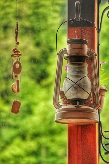 The Lamp in a Forest Close-up Focus On Foreground Green Color Bird Feeder Day Outdoors No People Freshness Lamp Forest Green Leaves Wooden Armenia Dilijan Rainy Fresh On Eyeem