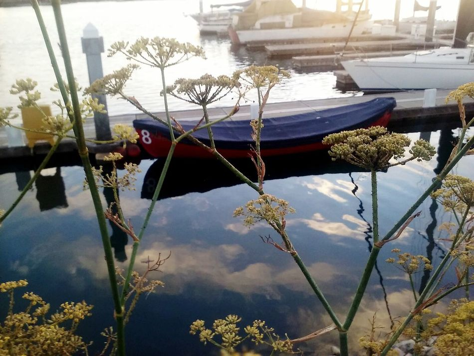 Endallbeall Boat Sky On Water