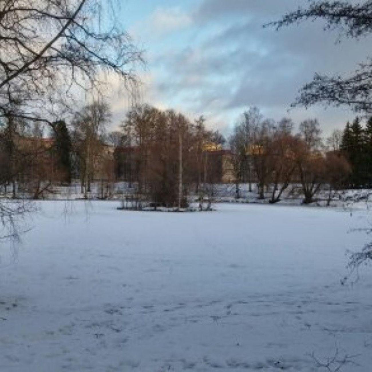 Sorsapuisto Tampere Finland Suomi Snow Lumi January Tammikuu Ilovetampere Ilovefinland Visittampere Tre Tampereallbright