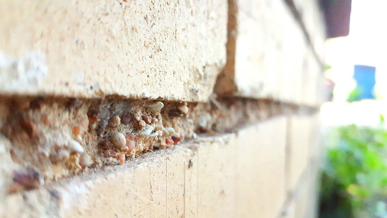 Brickstones Wall - Building Feature Close-up Focus On Foreground No People Rugged Backgrounds