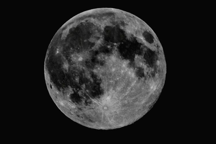 Luna Viareggio Luna