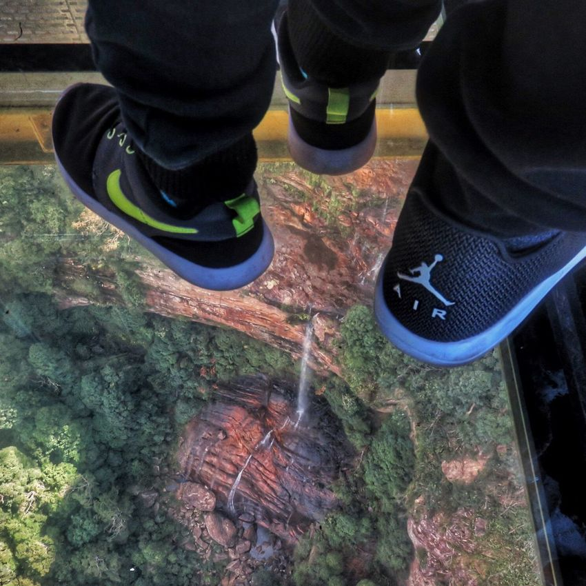 Walking on air. Envision The Future Scenic Skyway Scenic World Blue Mountains Victoria Australia Katoomba Katoomba Falls The Great Outdoors With Adobe The Great Outdoors Mountains Falls Beautiful Nature Beautiful Scenery Amazing Views Amazing Earth Earth Nature And Technology Travel Photography On Top Of The World Feel The Journey Original Experiences Down Under Land Down Under The Journey Is The Destination