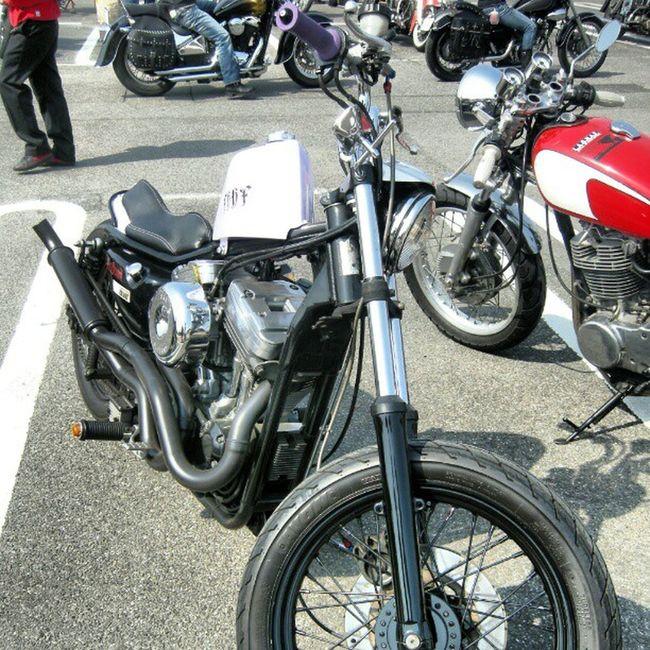 old photo joits custom show parking Harleydavidson Sportser Chopper Bobber