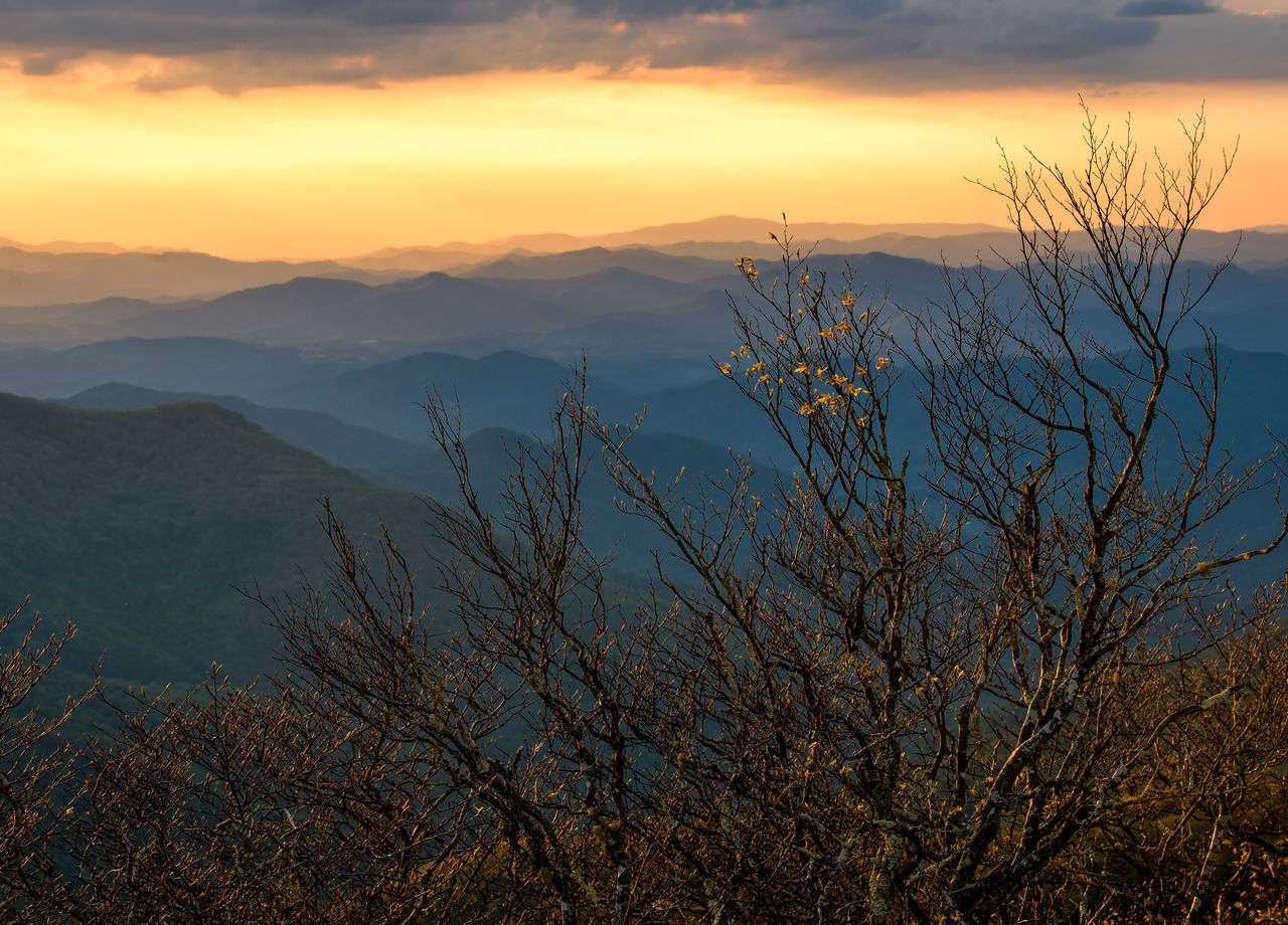 Beauty In Nature Blue Ridge Mountains Craggy Gardens Day Idyllic Landscape Mountain Mountain Range Nature No People Outdoors Scenics Sky Sunset Tranquil Scene Tranquility Travel Destinations Tree The Great Outdoors - 2017 EyeEm Awards