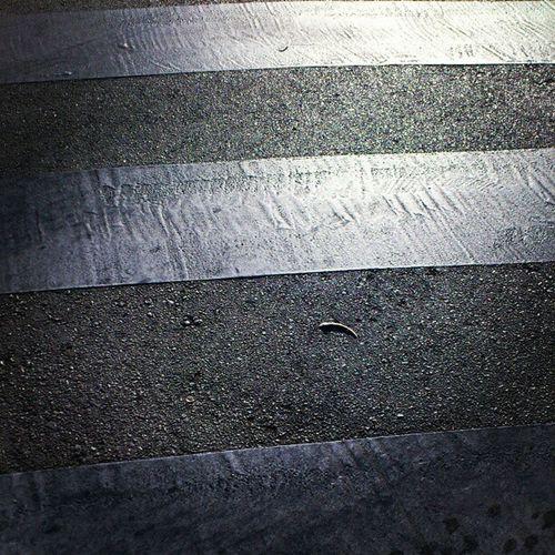 Pedestrian Cross Lane on the Street marbella spain