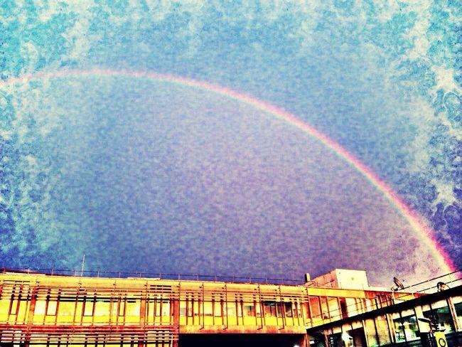 Colchester Rainbow